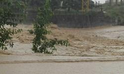 خبرگزاری فارس:  154 شهر و روستا درگیر سیل و آبگرفتگی/ رهاسازی 106 خودرو از مسیر سیلاب